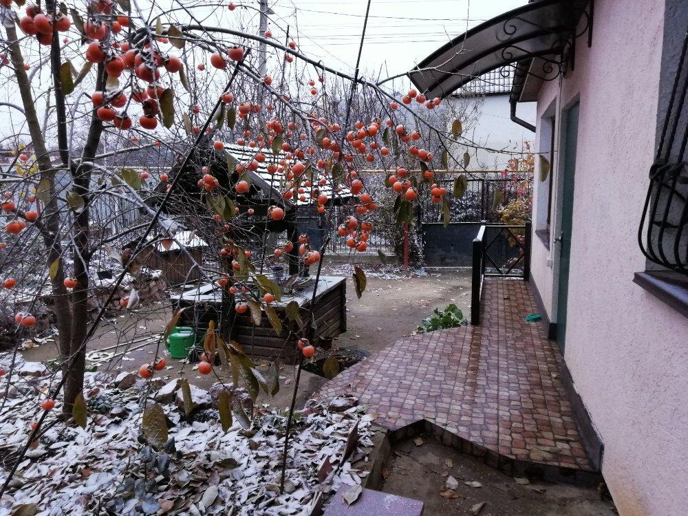 Дом С Участком на продажу по адресу Россия, Республика Крым, садоводческое товарищество Салгир, Солнечная ул